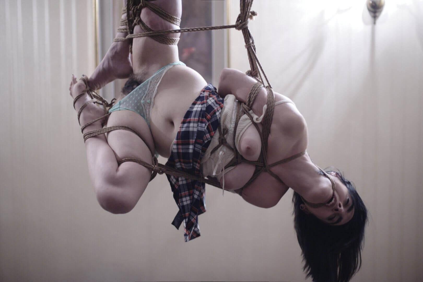 Shibari kinbaku bondage